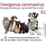 Coronavirus, a Roma una task force di volontari per gli animali