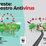 Wwf, le pandemie derivano dalla distruzione della Natura