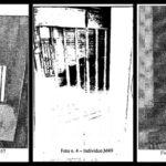 Orsi detenuti. Oipa chiede il sequestro del Casteller